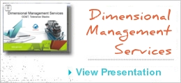 Dimensional Management Services EGS India